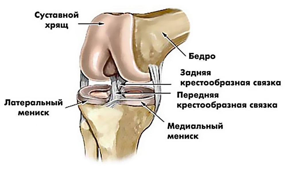 Помощь при боли в коленном суставе очень болят локтевые суставы